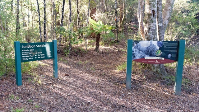 Dun Mountain Trail signs at track 1