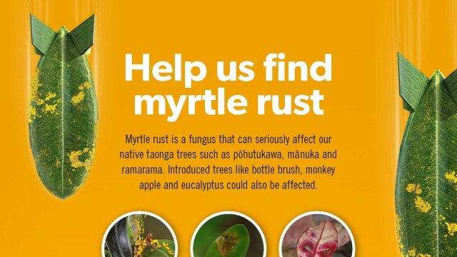 MPB0022 Myrtle Rust A2 Poster crop