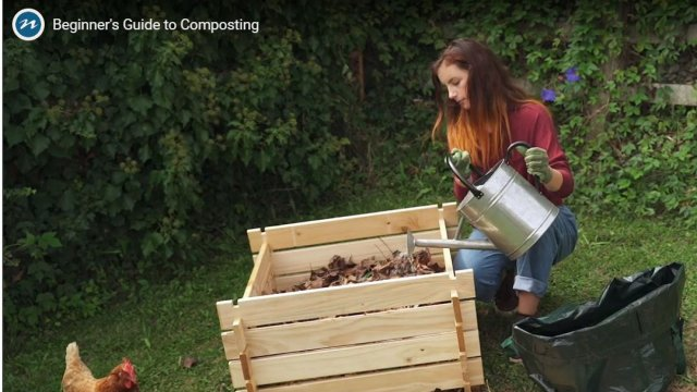 compost video 2