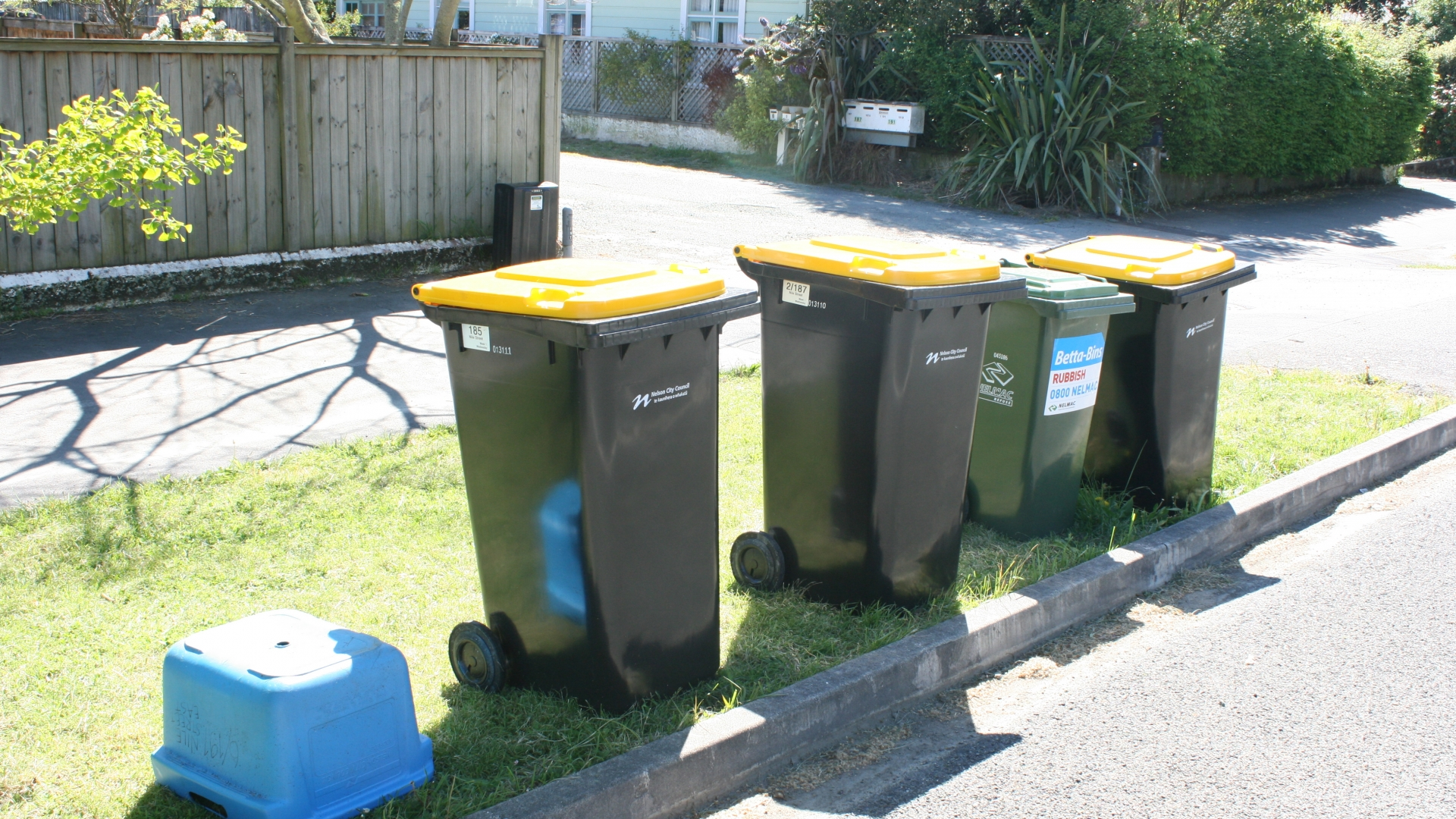 Recycling returns to normal in Nelson from Monday, 18 May.
